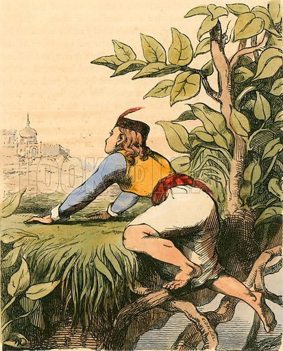 Jack at the top of the Beanstalk. Illustration for The Home Treasury of Old Story Books (Sampson Low, 1859).