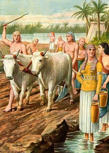 Egypt - Life in the fields.  Illustration for Storia de Costume dei Popoli by Paolo Lorenzini (Nerbini, 1934).