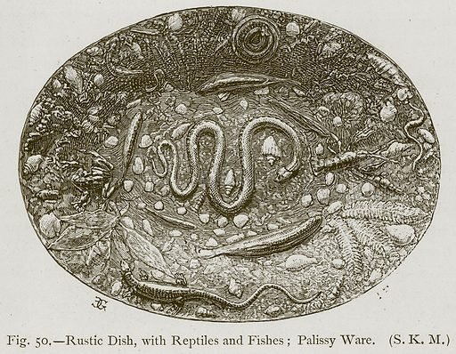Rustic Dish, with Reptiles and Fishes; Palissy Ware. Illustration for Historic Ornament by James Ward (Chapman and Hall, 1897).