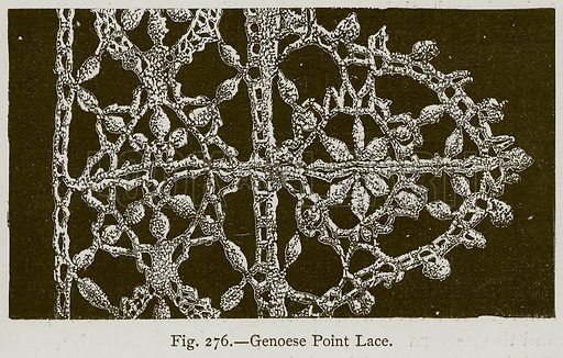 Genoese Point Lace. Illustration for Historic Ornament by James Ward (Chapman and Hall, 1897).