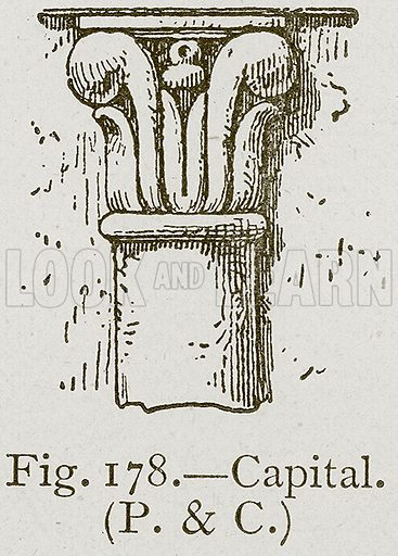 Capital. Illustration for Historic Ornament by James Ward (Chapman and Hall, 1897).