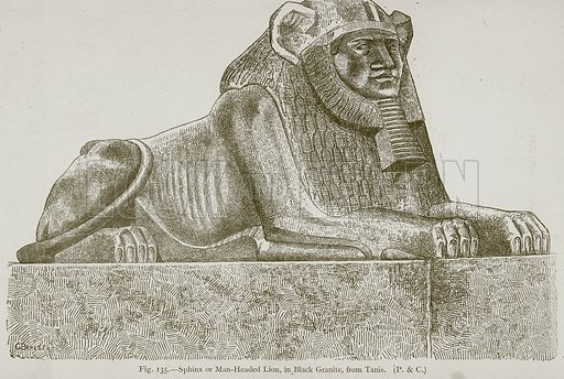 Sphinx or Man-Headed Lion, in Black Granite, from Tanis. Illustration for Historic Ornament by James Ward (Chapman and Hall, 1897).