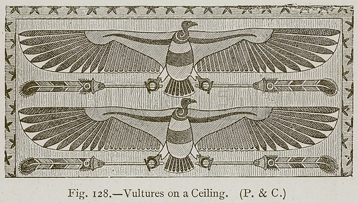 Vultures on a Ceiling. Illustration for Historic Ornament by James Ward (Chapman and Hall, 1897).
