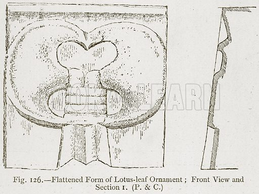 Flattened Form of Lotus-Leaf Ornament; Front View and Section I. Illustration for Historic Ornament by James Ward (Chapman and Hall, 1897).