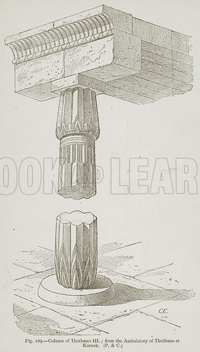 Column of Thothmes III. from the Ambulatory of Thothmes at Karnak. Illustration for Historic Ornament by James Ward (Chapman and Hall, 1897).