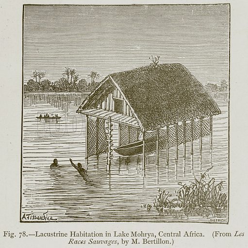Lacustrine Habitation in Lake Mohrya, Central Africa. Illustration for Historic Ornament by James Ward (Chapman and Hall, 1897).
