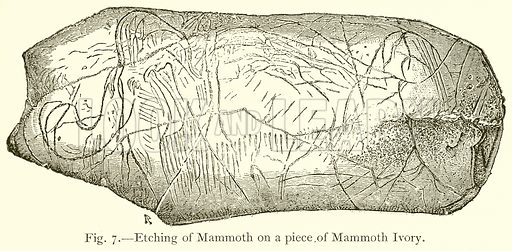Etching of Mammoth on a Piece of Mammoth Ivory