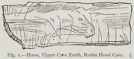 Horse, Upper Cave Earth, Robin Hood Cave. Illustration for Historic Ornament by James Ward (Chapman and Hall, 1897).