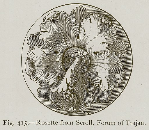 Rosette from Scroll, Forum of Trajan. Illustration for Historic Ornament by James Ward (Chapman and Hall, 1897).