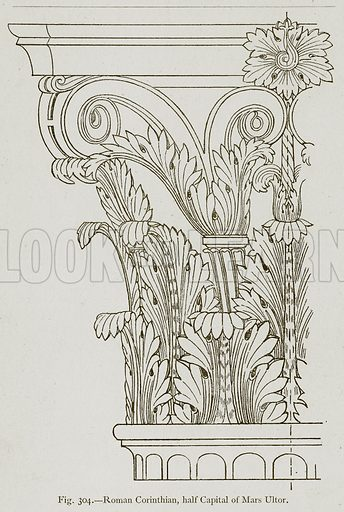 Roman Corinthian, Half Capital of Mars Ultor. Illustration for Historic Ornament by James Ward (Chapman and Hall, 1897).
