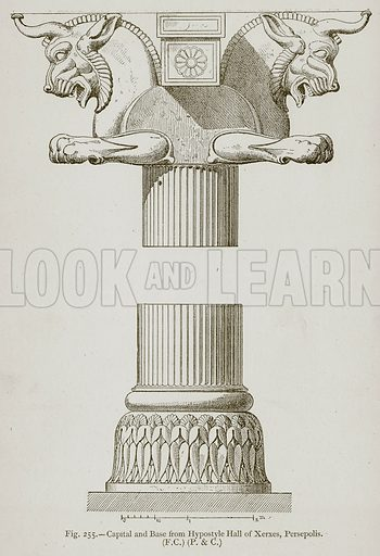 Capital and Base from Hypostyle Hall of Xerxes, Persepolis. Illustration for Historic Ornament by James Ward (Chapman and Hall, 1897).