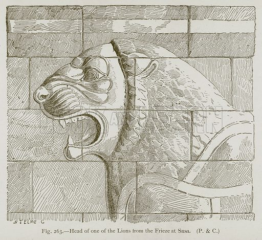 Head of One of the Lions from the Frieze at Susa. Illustration for Historic Ornament by James Ward (Chapman and Hall, 1897).