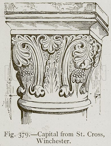 Capital from St. Cross, Winchester. Illustration for Historic Ornament by James Ward (Chapman and Hall, 1897).
