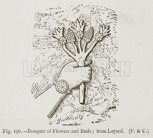 Bouquet of Flowers and Buds; from Layard. Illustration for Historic Ornament by James Ward (Chapman and Hall, 1897).