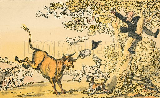 Dr Syntax Pursued by a Bull. Illustration for Doctor Syntax's Three Tours by William Combe (John Camden Hotten, c 1870).