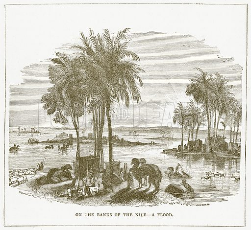 On the Banks of the Nile – A Flood. Illustration for Pictorial Records of Remarkable Events (James Sangster, c 1880).