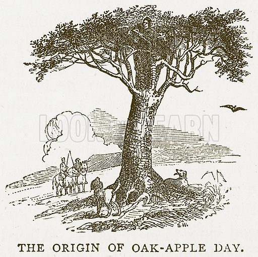 The Origan of Oak-Apple Day. Illustration for Pictorial Records of Remarkable Events (James Sangster, c 1880).