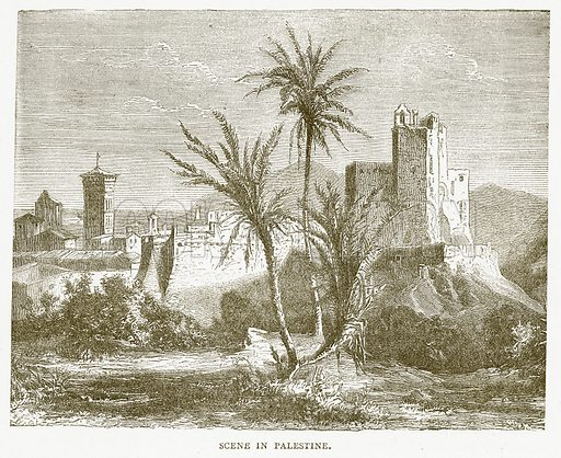Scene in Palestine. Illustration for Pictorial Records of Remarkable Events (James Sangster, c 1880).
