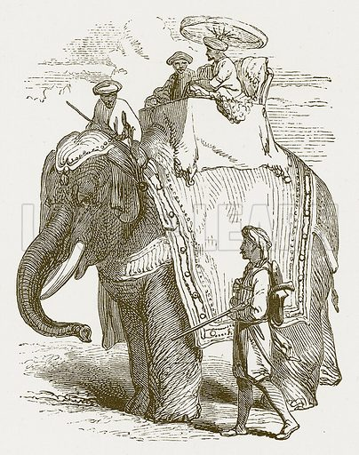 Elephant. Illustration for The Children of India (Religious Tract Society, c 1875).