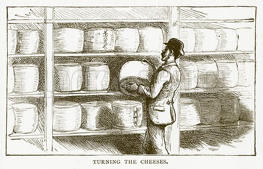 Turning the Cheeses. Illustration for Aunt Louisa's Book of Common Things by L Valentine (Frederick Warne, c 1880).