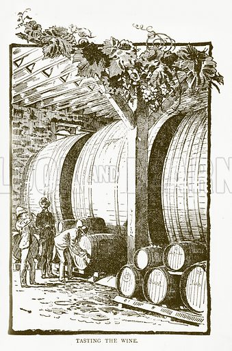 Tasting the Wine. Illustration for Aunt Louisa's Book of Common Things by L Valentine (Frederick Warne, c 1880).