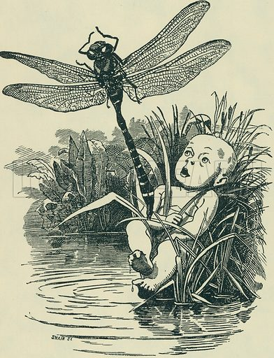 The Dragon-Fly. The Water Babies. From Illustrators of the Sixties by Forrest Reid (Faber, 1928).