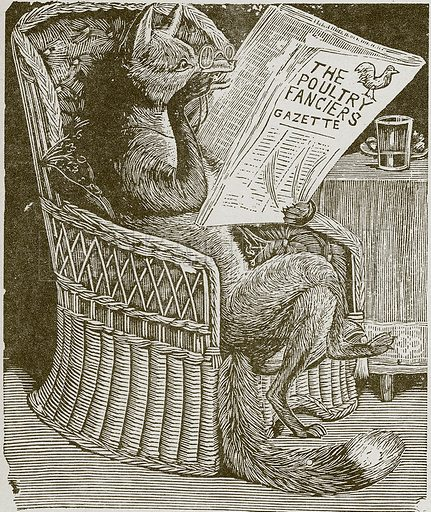 Fox reading the poulty fanciers gazette.  Nineteenth century comic picture reprinted in an edition of Cole's Funny Picture Book.