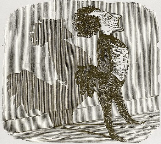 Vanity.  Nineteenth century comic picture reprinted in an edition of Cole's Funny Picture Book.