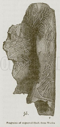 Fragment of Engraved Shell, from Wurka. Illustration for Discoveries in the Ruins of Nineveh and Babylon by Austen Layard (John Murray, 1853).