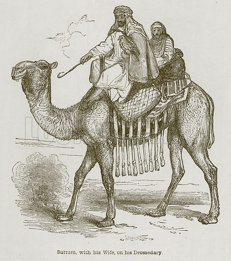 Suttum, with his Wife, on his Dromedary. Illustration for Discoveries in the Ruins of Nineveh and Babylon by Austen Layard (John Murray, 1853).