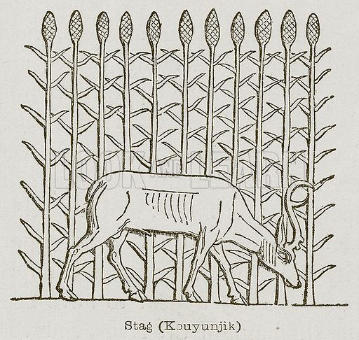 Stag (Kouyunjik). Illustration for Discoveries in the Ruins of Nineveh and Babylon by Austen Layard (John Murray, 1853).