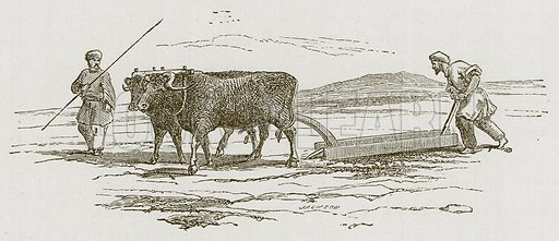 Ploughing in Armenia. Illustration for Discoveries in the Ruins of Nineveh and Babylon by Austen Layard (John Murray, 1853).