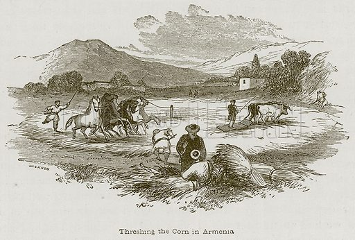 Threshing the Corn in Armenia. Illustration for Discoveries in the Ruins of Nineveh and Babylon by Austen Layard (John Murray, 1853).