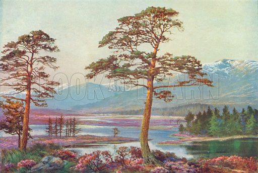 On Loch Tulla, Black Mount, Argyllshire. Illustration for Hutchinson's Britain Beautiful (c 1910).