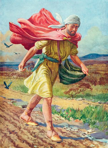 The Sower. Illustration for The Bible Picture Book.