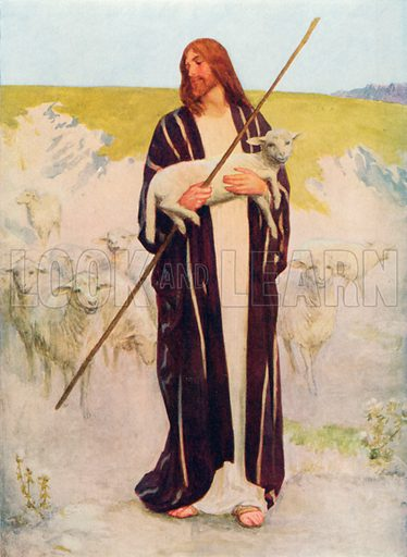 The Good Shepherd. Illustration for The Bible Picture Book.