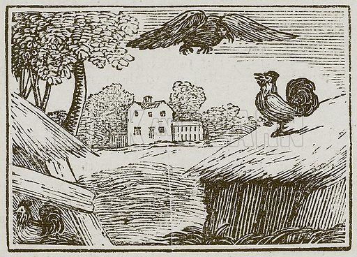 The Fighting Cocks. Illustration for The Fables of Aesop by Samuel Croxall (Milner & Sowerby, 1860).