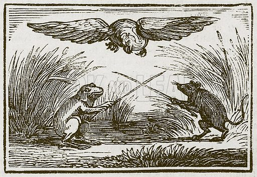The Frog and the Mouse. Illustration for The Fables of Aesop by Samuel Croxall (Milner & Sowerby, 1860).