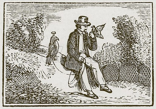 The Falconer and the Partridge. Illustration for The Fables of Aesop by Samuel Croxall (Milner & Sowerby, 1860).