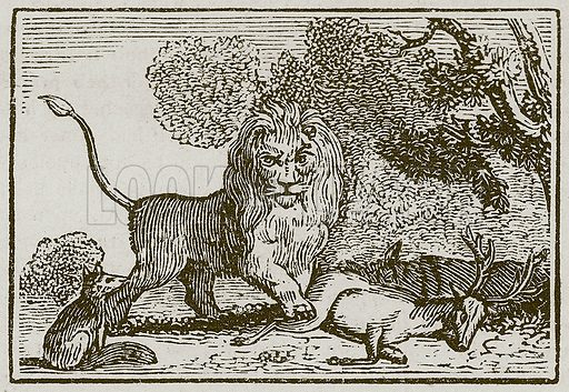 The Lion, the Ass and the Fox. Illustration for The Fables of Aesop by Samuel Croxall (Milner & Sowerby, 1860).