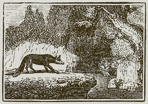The Fox and the Sick Lion. Illustration for The Fables of Aesop by Samuel Croxall (Milner & Sowerby, 1860).