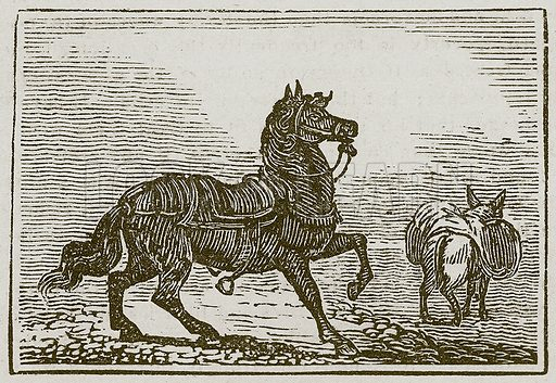 The Horse and the Ass. Illustration for The Fables of Aesop by Samuel Croxall (Milner & Sowerby, 1860).