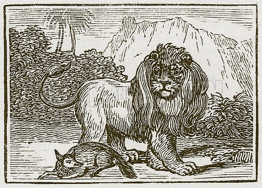 The Fox and the Lion. Illustration for The Fables of Aesop by Samuel Croxall (Milner & Sowerby, 1860).