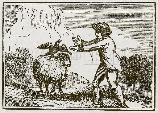 The Eagle and the Crow. Illustration for The Fables of Aesop by Samuel Croxall (Milner & Sowerby, 1860).