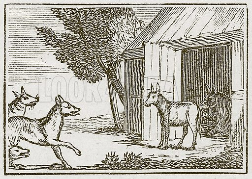 The Wolves and the Sick Ass. Illustration for The Fables of Aesop by Samuel Croxall (Milner & Sowerby, 1860).