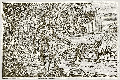 The Fox and the Countryman. Illustration for The Fables of Aesop by Samuel Croxall (Milner & Sowerby, 1860).