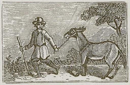 The Sensible Ass. Illustration for The Fables of Aesop by Samuel Croxall (Milner & Sowerby, 1860).