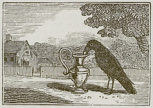 The Crow and the Pitcher. Illustration for The Fables of Aesop by Samuel Croxall (Milner & Sowerby, 1860).