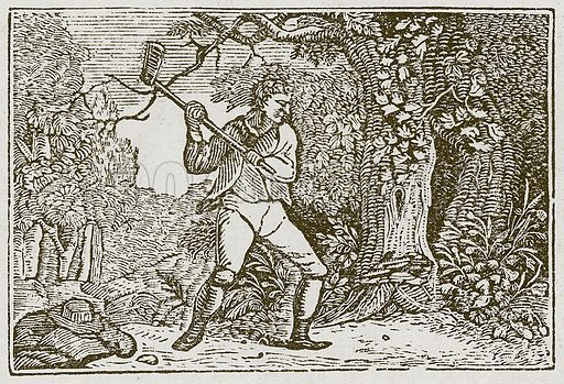 The Wood and the Clown. Illustration for The Fables of Aesop by Samuel Croxall (Milner & Sowerby, 1860).
