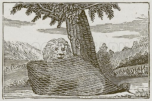 The Lion and the Mouse. Illustration for The Fables of Aesop by Samuel Croxall (Milner & Sowerby, 1860).